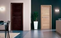 Выбор цвета двери под интерьер дома