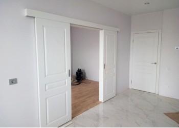 Межкомнатные двери с покрытием Шпон, модель Честер (эмаль)