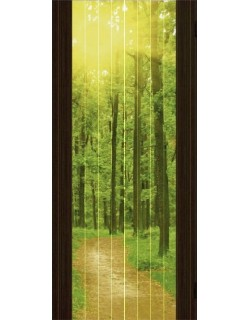 Дверь Сиб-профиль фото Утро в лесу дуб мокко