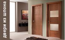 Как выбрать двери из шпона?